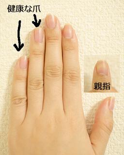 左手.jpg